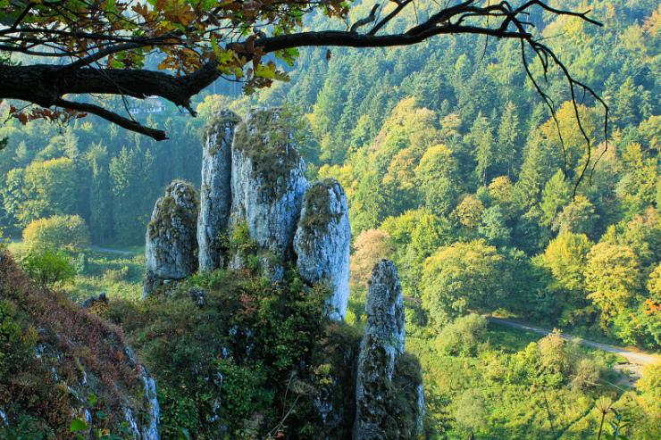 Parc National d'Ojcowski