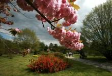 Jardin Botanique à Lodz